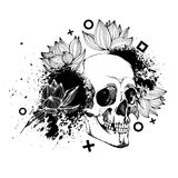 Interesting skull  with flowers. Painted, bright and attractive. Interesting skull  with flowers. Painted, bright Stock Photography