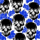Interesting skull vector with flowers. Painted Stock Image