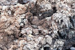 Interesting structure of lava stone near vulcano Caldera Blanca, Lanzarote, Canary Islands, Spain.  royalty free stock photography