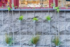 Interesting wall and plants of the beautiful Breakneck Steps area. Interesting wall and platns of the beautiful Breakneck Steps area at Quebec, Canada royalty free stock photos