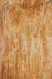 Interesting wooden background,texture Royalty Free Stock Photos