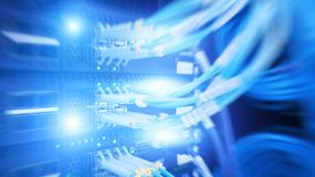 Interfaccia del connettore ottico della fibra Indicatori luminosi blu Alto vicino del cavo immagine stock