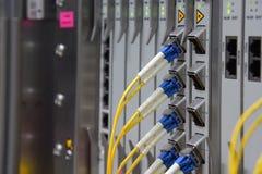 Interface de connecteur optique de fibre pour le telec de l'équipement DWDM de cartes Photos stock
