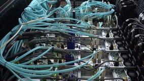 Interface van de vezel de Optische schakelaar Informatietechnologie Computernetwerk, de Optische Verbonden Kabels van de Telecomm stock video