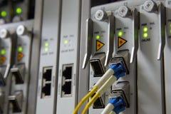 Interfaz del conector óptico de la fibra para el telec del equipo DWDM de las tarjetas Imagen de archivo libre de regalías