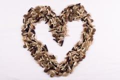 Interi granuli per un cuore sano Fotografie Stock Libere da Diritti