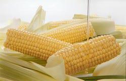 Interi noccioli di cereale Fotografie Stock