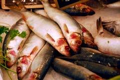 Interi pesci Fotografia Stock Libera da Diritti
