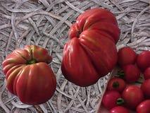 Interi pomodori dell'insalata Immagini Stock Libere da Diritti