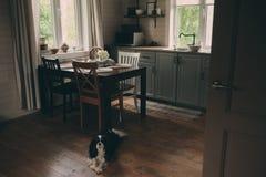 Interior acogedor de la cabina Cocina gris del país con la estantería abierta en estilo rústico Imágenes de archivo libres de regalías