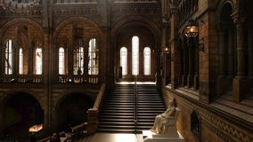Interior architecture and decoration of The Natural History Museum, the UK`s centre of excellence collections in taxonomy and. LONDON UK - Apr 21, 2019 royalty free stock image