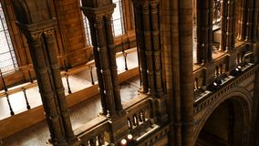 Interior architecture and decoration of The Natural History Museum, the UK`s centre of excellence collections in taxonomy and. LONDON UK - Apr 21, 2019 stock photos