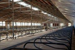 Interior arrangement modern dairy barn complex -tovarnogo royalty free stock photo