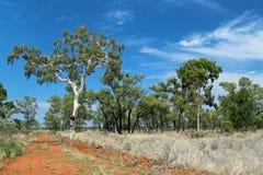 Interior australiano Fotografia de Stock