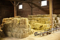 Interior of barn with hay bales. Stacks and conveyor belt Stock Photography