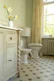 Interior of a bathroom. With flowers Royalty Free Stock Photos