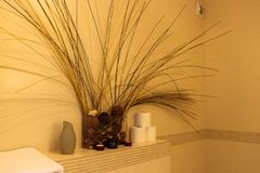 Interior of the bathroom composition of dried flowers royalty free stock photos