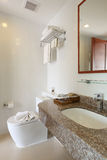 Interior bathroom. In the hotel Royalty Free Stock Image
