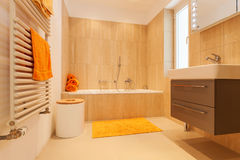 Interior, bathroom Royalty Free Stock Photography