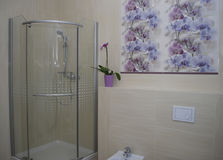 Interior bathroom shower with one door, built-in toilet and bidet. Royalty Free Stock Images