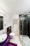 Interior of a bathroom with shower; toilet and washbasin Stock Images
