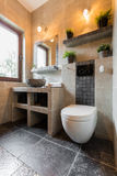 Interior of bathroom with toilet Stock Image