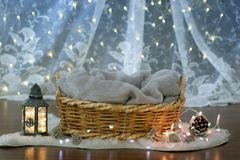 Interior of a bedroom for a newborn. Basket  of the night sky  background Royalty Free Stock Photos