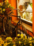 Interior with bicycle. Bicycle at the shop window. Yellow and orange interior Royalty Free Stock Image
