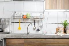 Interior blanco del fregadero de cocina Imagenes de archivo