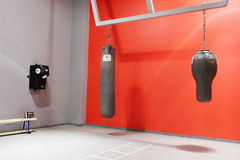 Interior of boxing hall in a modern fitness center Royalty Free Stock Photography