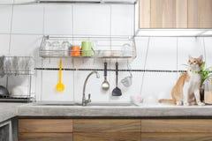 Interior branco da banca da cozinha Imagem de Stock