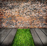Interior with brick wall and green grass Royalty Free Stock Images