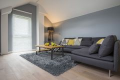Interior brillante espacioso de la sala de estar imagenes de archivo