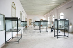 Interior of Carthage National Museum Royalty Free Stock Image