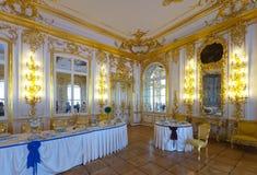 Interior of Catherine Palace Stock Photos