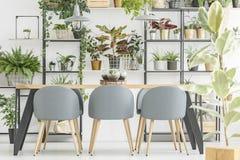 Interior cinzento floral da sala de jantar imagem de stock royalty free