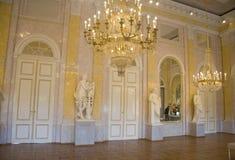 Interior clássico da galeria de Albertina imagens de stock