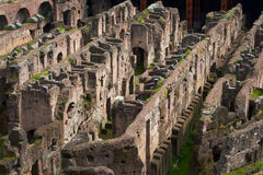 Interior of Coliseum Royalty Free Stock Image
