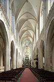 Interior da catedral Imagens de Stock Royalty Free