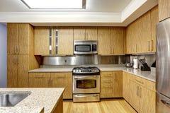Interior da cozinha com guarnição de aço do backsplash Foto de Stock Royalty Free