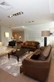 Grupo de couro do sofá imagens de stock royalty free