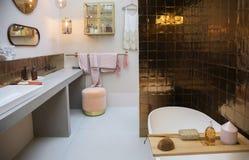 Interior da sala do banho Foto de Stock