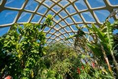Interior de Denver Botanic Gardens bonito imagens de stock