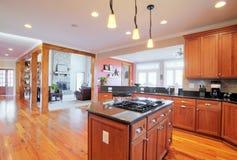 Interior de gama alta da cozinha imagem de stock royalty free