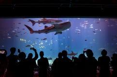 Interior de Georgia Aquarium con la gente Fotografía de archivo libre de regalías