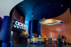 Interior de Georgia Aquarium con la gente Imágenes de archivo libres de regalías