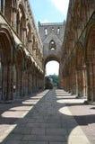 Interior de la abadía de Jedburgh Fotografía de archivo libre de regalías