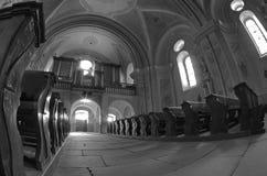 Interior de la catedral de Sumuleu - monocromo Imágenes de archivo libres de regalías