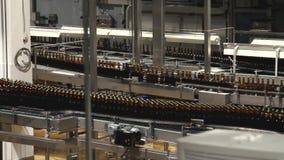 Interior de la fábrica de la cerveza almacen de metraje de vídeo