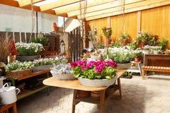Interior de la floristería Fotografía de archivo